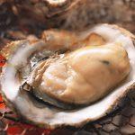 牡蠣が海のミルクと呼ばれる由来とは?