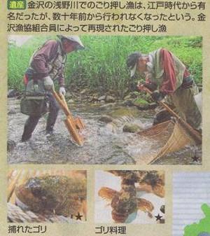 ゴリ押し 漁
